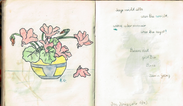 Diary 31